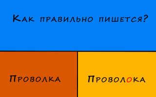 """""""Проволка"""" или """"проволока"""" какой вариант верный?"""