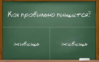 """Написание слова """"живешь"""" – нужен ли """"ь"""" и что писать в первом слоге """"е"""" или """"и"""""""