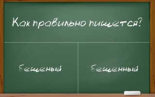 """Правильное написание слова """"бешеный""""?"""