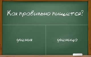 """Правописание гласных в словах """"ученик"""" и """"ученица"""""""