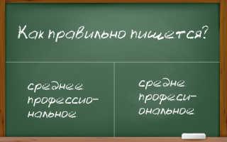 Как правильно писать «среднее профессиональное образование»?