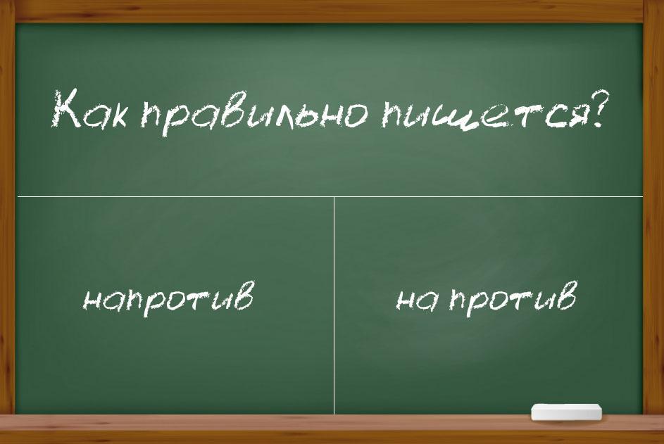 """Правописание наречия """"напротив"""""""