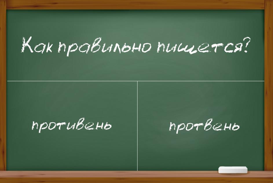 """Как правильно пишется слово """"противень"""" или """"протвень""""?"""
